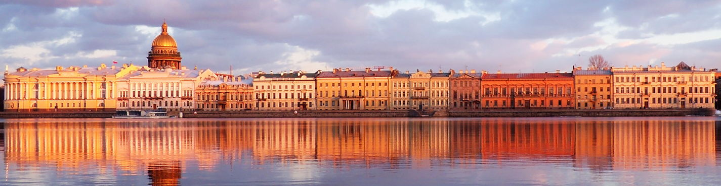 One-day individual tour in Saint Petersburg