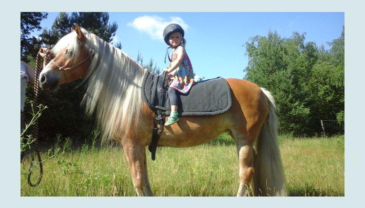 haus natur und umwelt ponyreiten