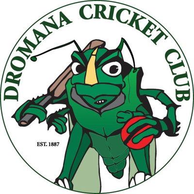 Dromana Cricket Club Logo
