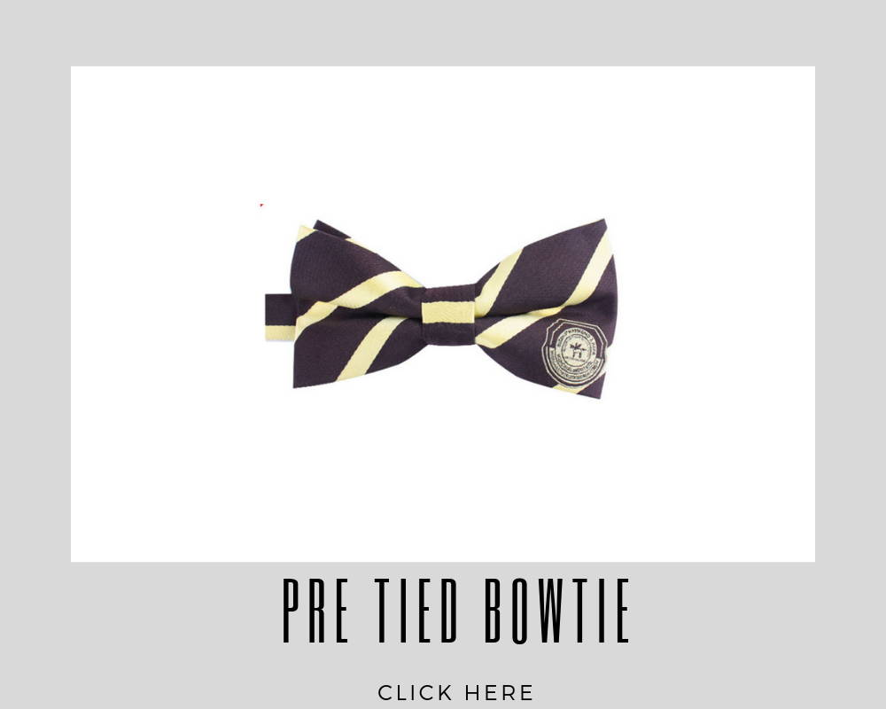 Corporate Custom Pre Tied Bow Ties