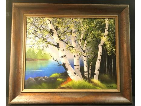 """""""Sunlit Birch Trees"""" by Ben Furman"""