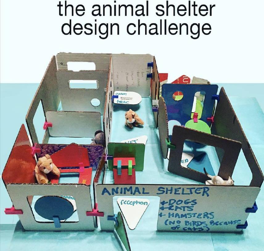 cardboard craft animal shelter