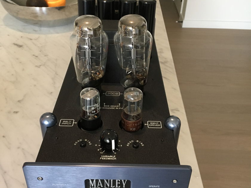 Manley Laboratories Neoclassic 300B SE-PP in excellent condition -REDUCED FOR QUICK SALE