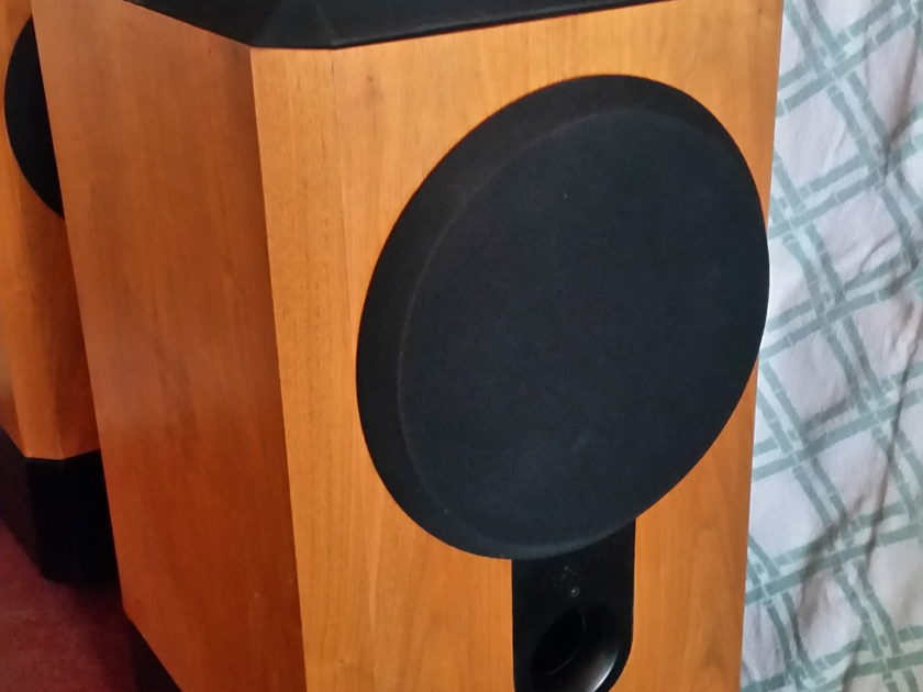Bowers and Wilkins 801 Matrix Series II With Northcreek Crossovers & Arcici Stands