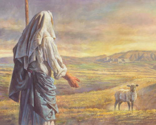Jesus reaching out toward a sheep standing in a field.