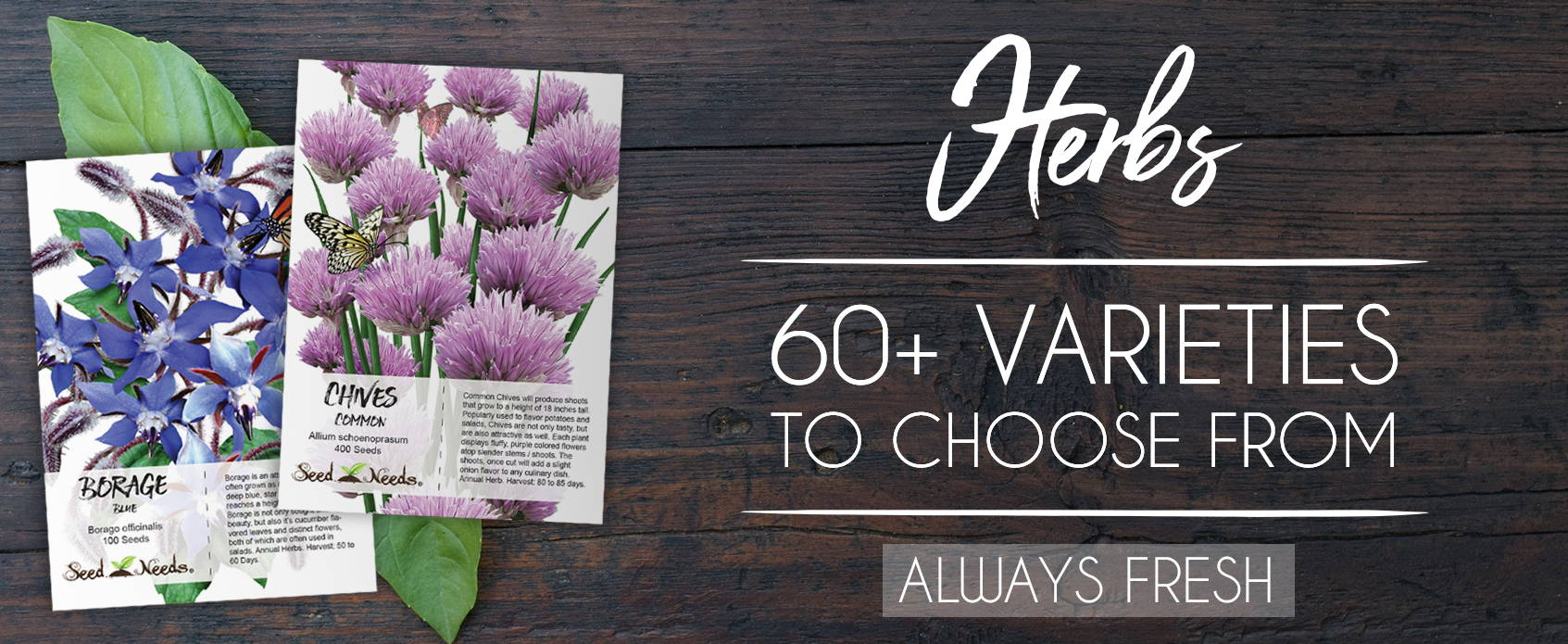 Seeds For Planting, Always Fresh & Guaranteed to Grow - Seed