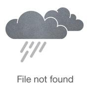 Photo of Mandy Kaplan