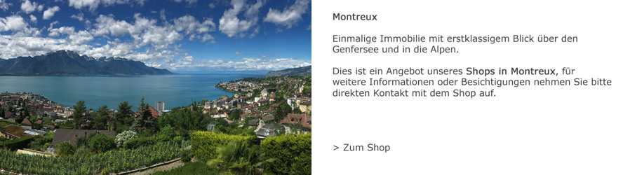 Zug - Einmalige Immobilie in Montreux