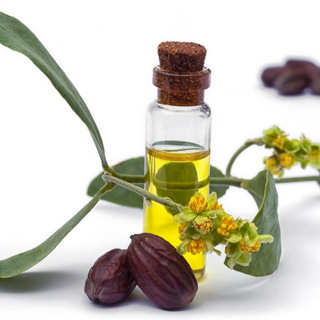 Blog 7 amazing benefits of jojoba oil