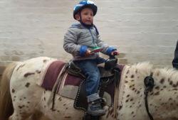 ponyhof stoelken kind reitet pony