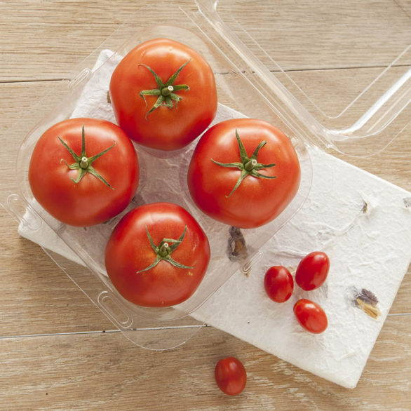 biodegradable container with spots for 4 tomatoes, apples or other produce
