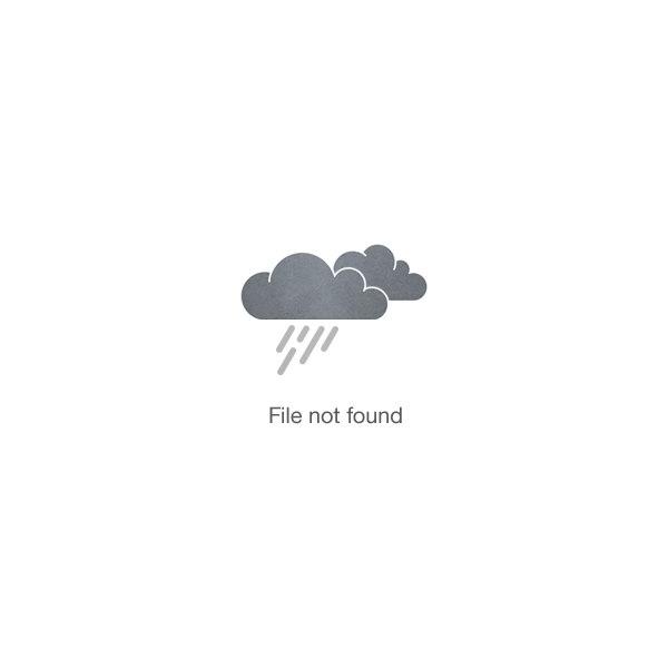 Burton C. Tiffany Elementary PTA