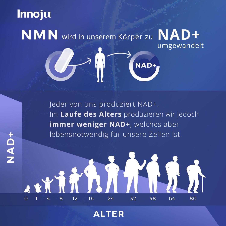 Grafik zur Wirkung von NMN in unserem Körper. NMN wird in NAD+ umgewandelt. Im Laufe des Alters produzieren wir immer weniger NAD+, welches aber lebensnotwendig für unsere Zellen ist.