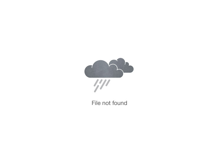 Image may contain: Peach and Cottage Cheese Crostini recipe.