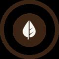Filicori Zecchini capsule 100% compostabili