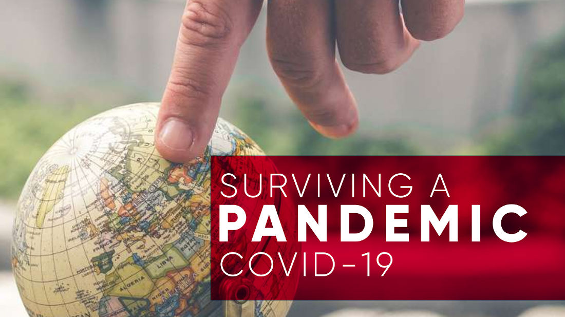 Surviving A Pandemic - COVID-19 image