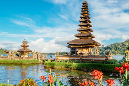 Bali Experience - You Decide What to Do
