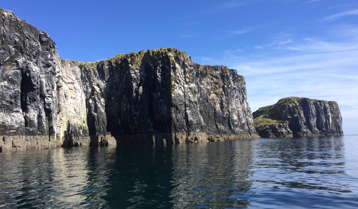 The Bass Rock Cliffs
