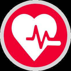 Crayolex crayohemp AGING & HEART WELLNESS CBD Oil