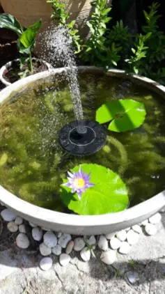 mini-fountain-energy-solar-solary-testimonial-5