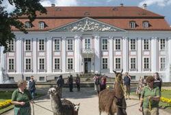 tierpark berlin friedrichsfelde tierführung