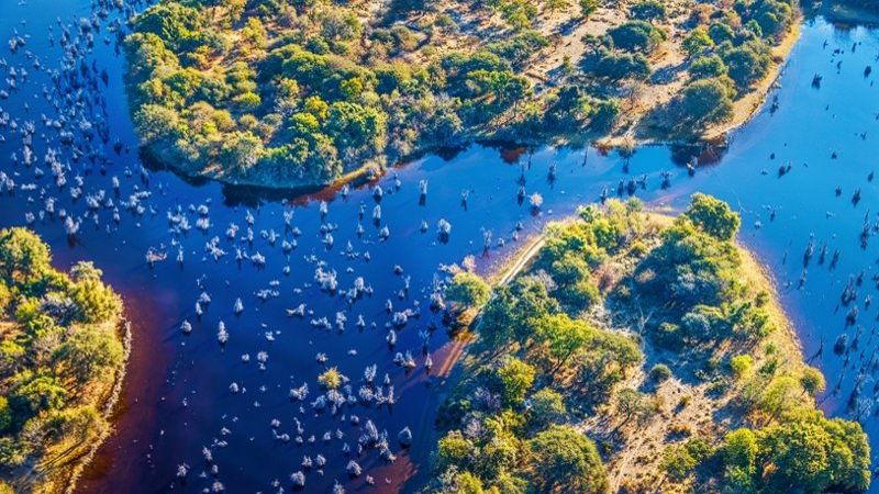 Waterways in the Okavango Delta, Botswana
