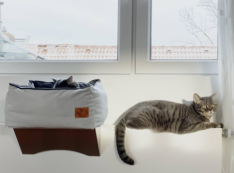 Heizungsliege und Katze auf der Heizung