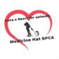 Medicine Hat SPCA logo
