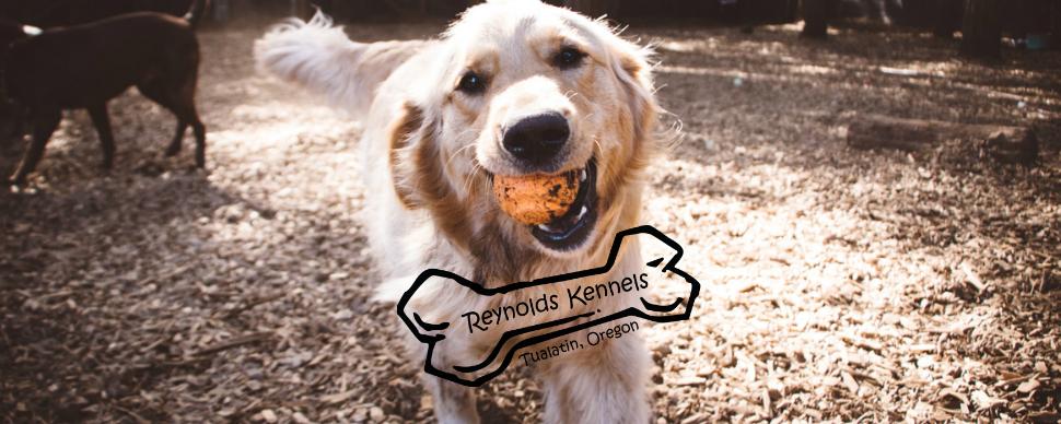 Reynolds Dog Resort