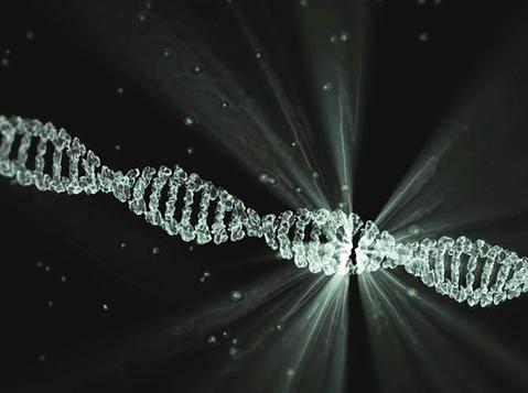MTHFR Gene Mutation for Beginners