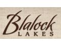 Blalock Lakes Quail Hunt for Four