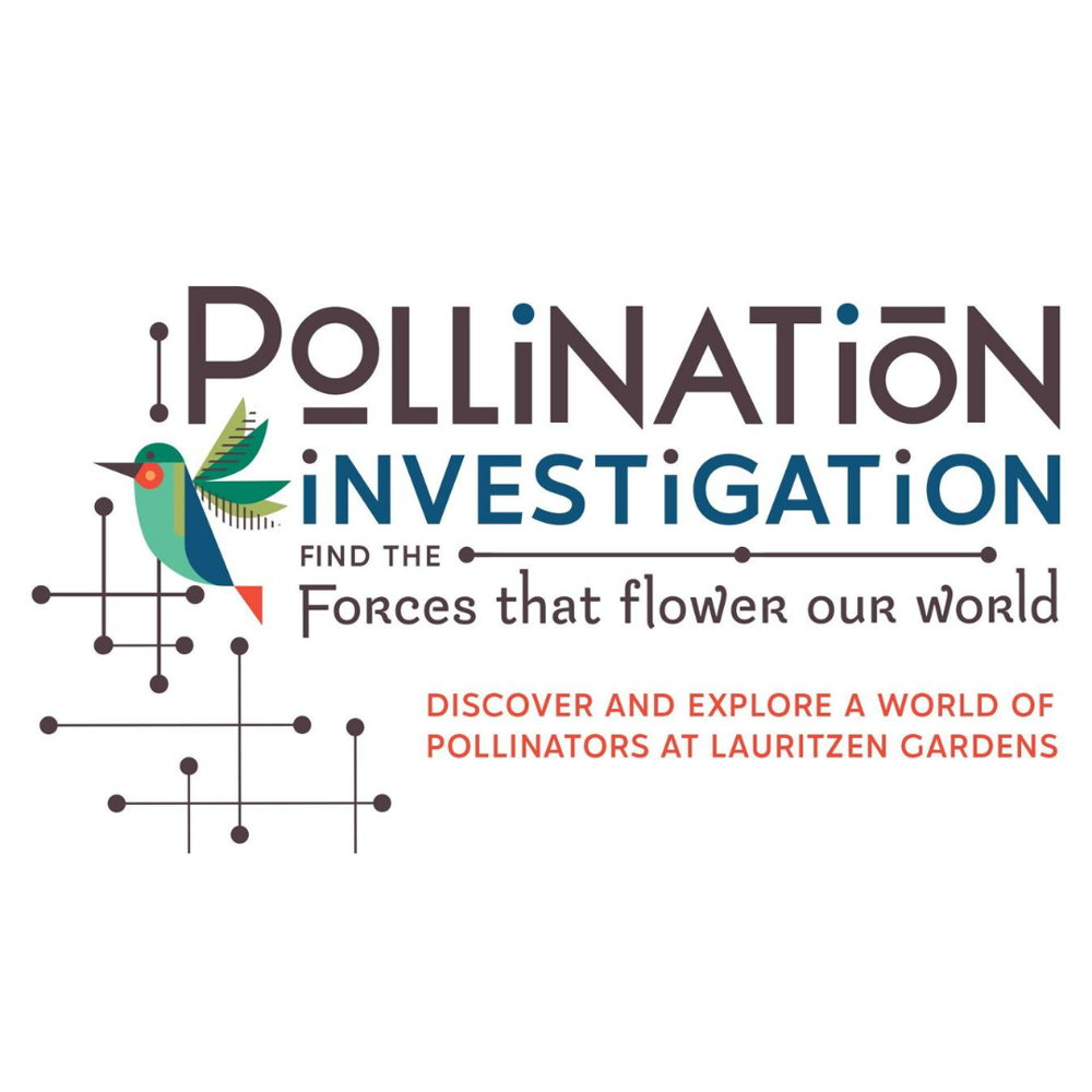 Picture of Pollination Investigation is a fun family scavenger hunt designed to present living examples of the partnerships between plants and their pollinators.