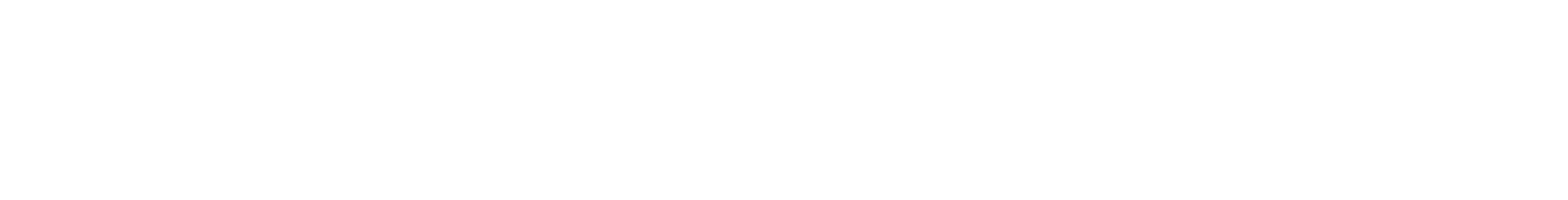 White logo   no background