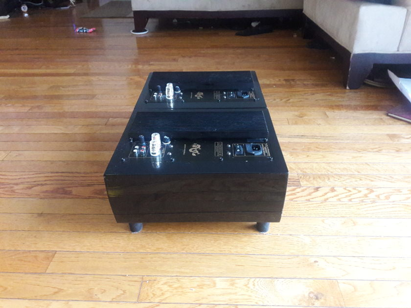 Tube Audio Design TAD-125 Mono Block Amplifiers