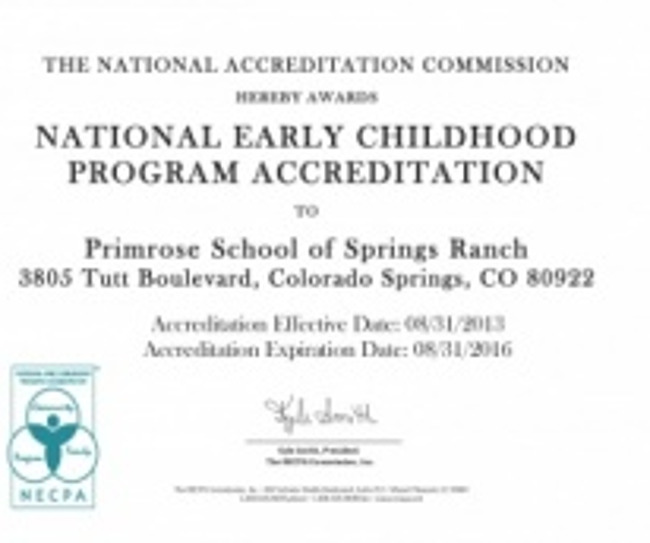 National early childhood program accreditation certificate for Primrose school of Springs Ranch