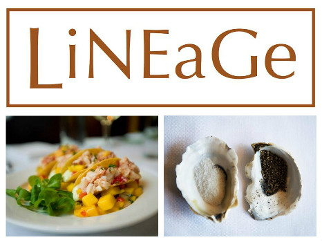 Lineage in Brookline - $100 Gift Certificate
