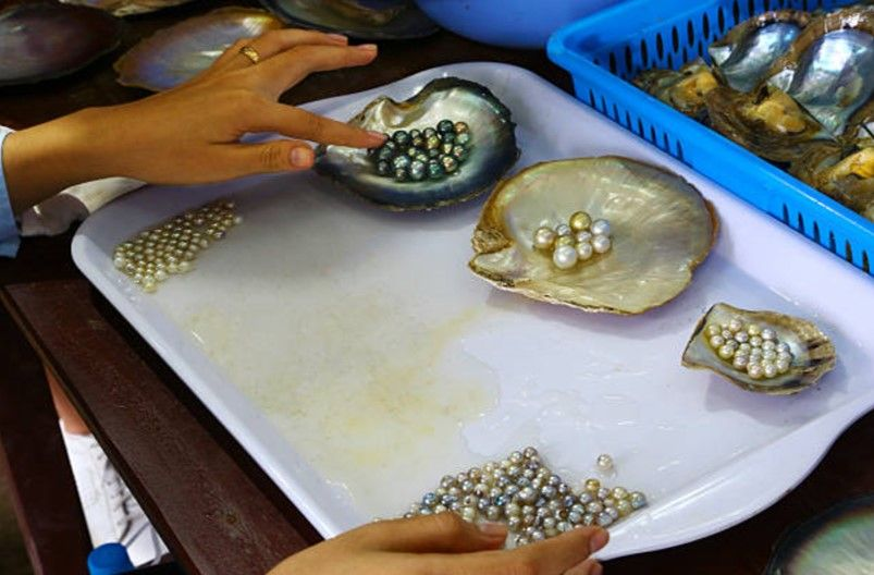 Sorted Sea Pearls