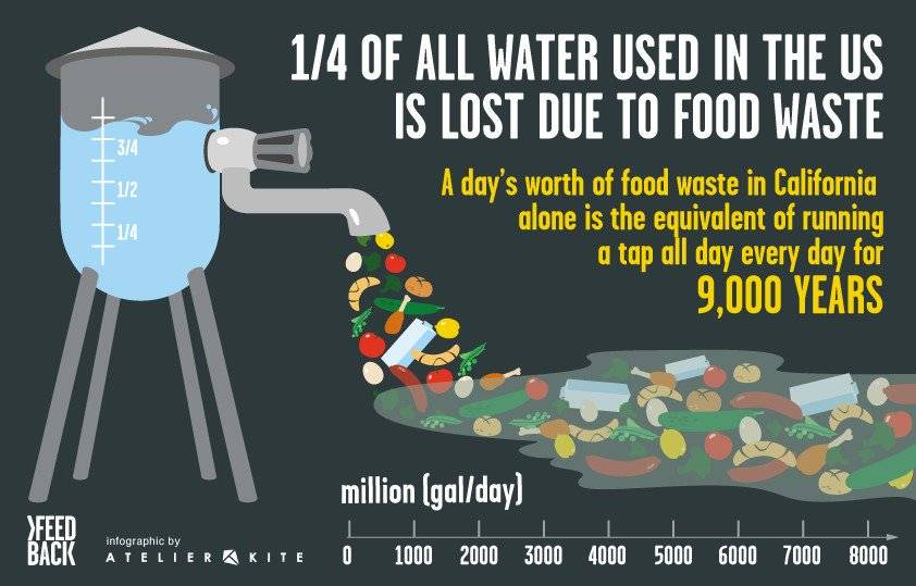 water loss due to food waste