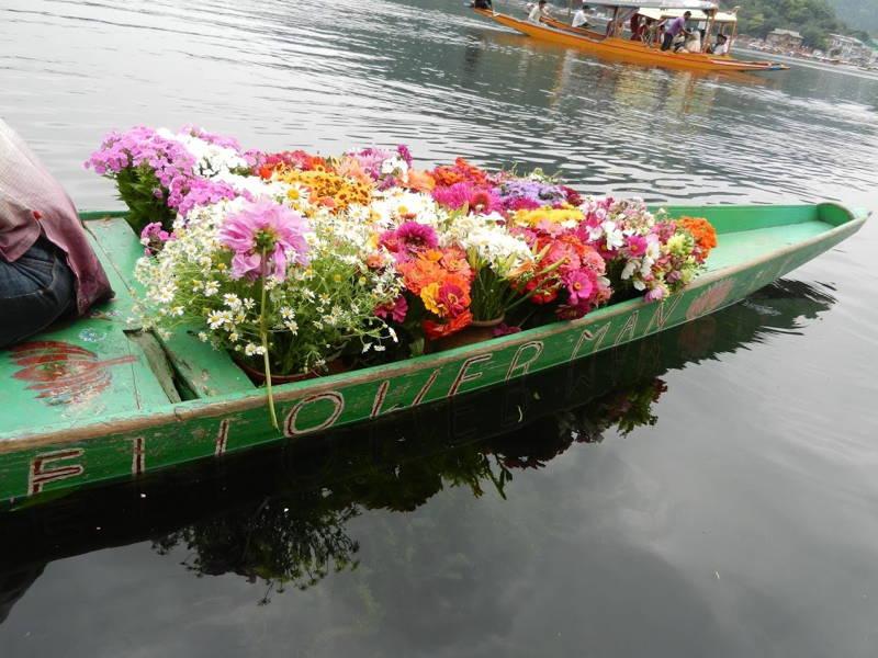 Srinagar Boat Flowers
