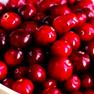 fastblast daily essentials contains organic cranberry