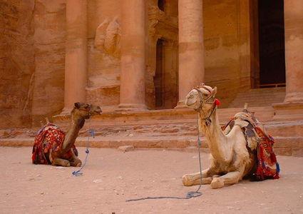 brief-guide-to-petra-jordan