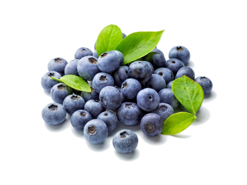 collection of antioxidative blueberries