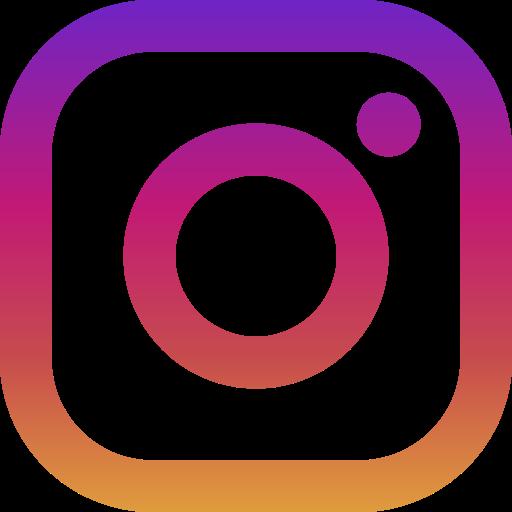real instagram followers