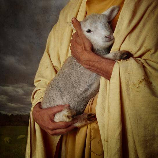 Jesus holding a lamb close to HIs chest.