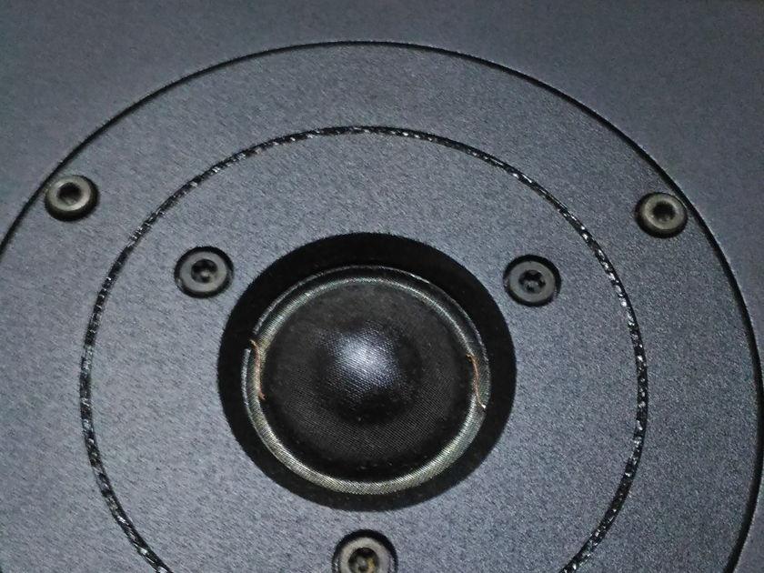 Dynaudio Acoustics LS5/12A Studio Monitor BBC