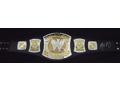 Aaron Rodgers Autographed Championship Belt