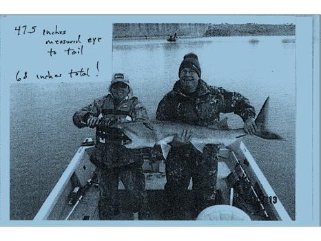 Paddlefish Trip on the Missouri River