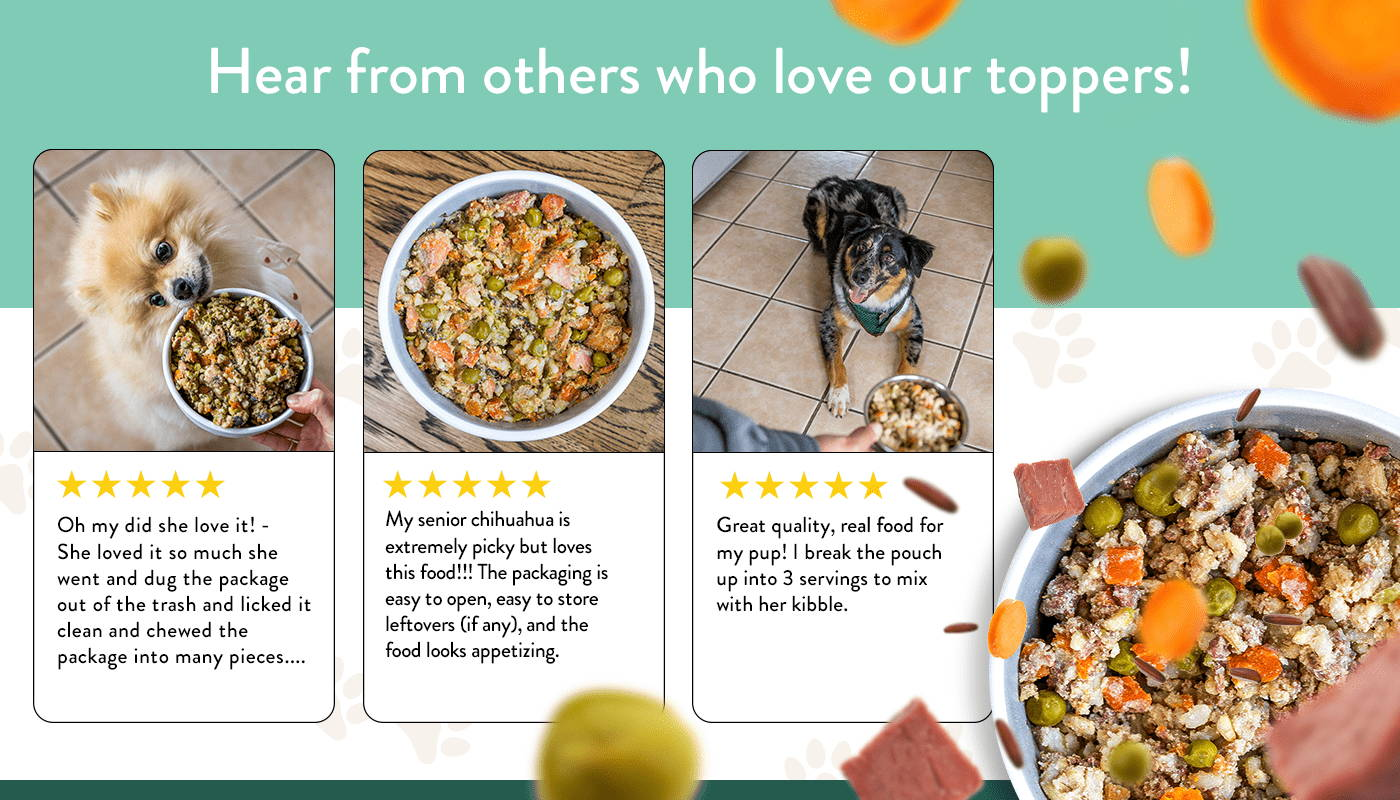 A selection of five star reviews from owners of picky dogs who love Portland Pet Food.