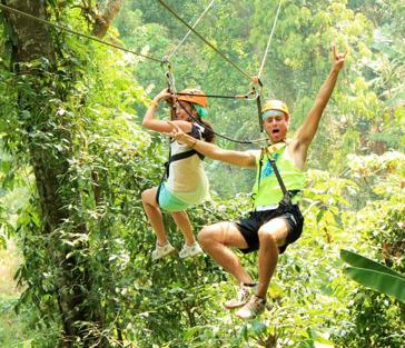 Полеты в джунглях