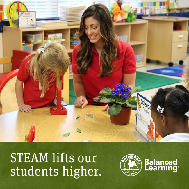 "Science, Technology, Engineering, Art, and Math are the fundamentals of our ""STEAM"" Balanced Learning Curriculum"